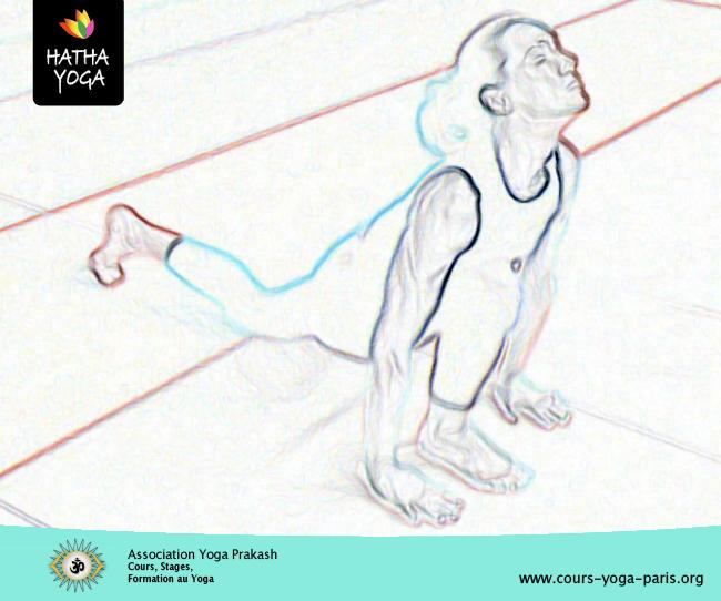 la posture équestre